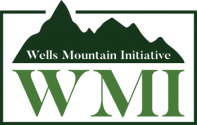 Wells Mountain Initative