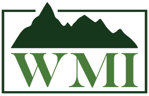 2019 Scholarship Application – Wells Mountain Initative